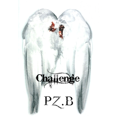 PZB_logo2.png