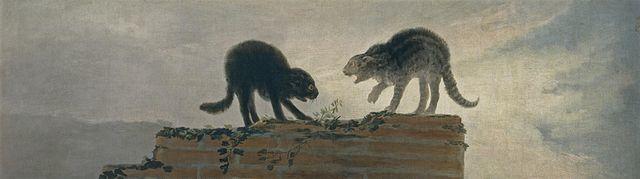 Goya Combat de chats