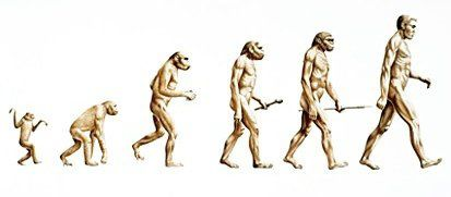 evolution-linear.jpg