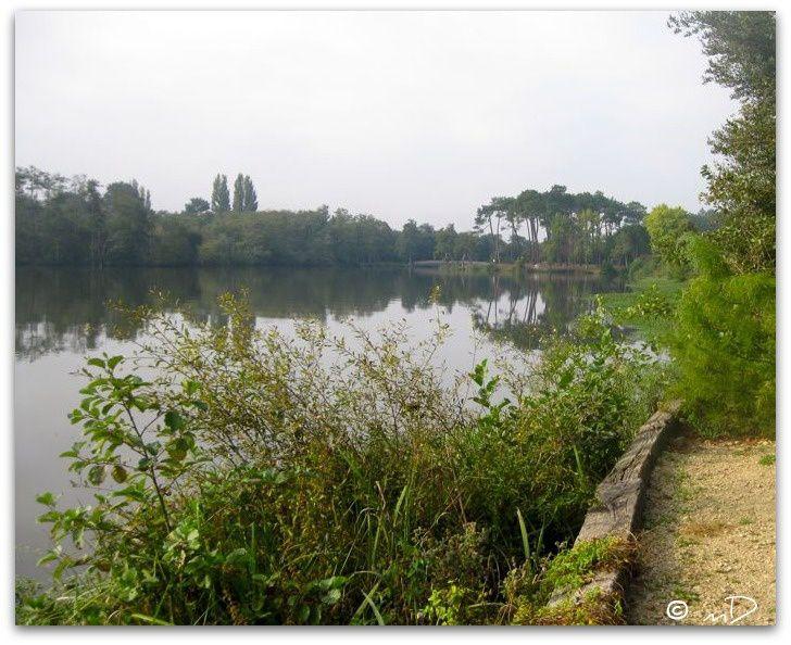 Lac d'Aureilhan 4 oct-8 k