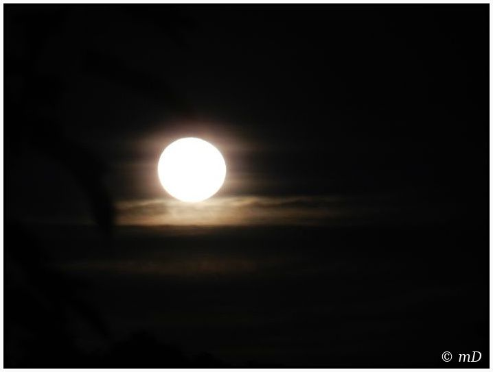 Lune blanche et or oct 12TX