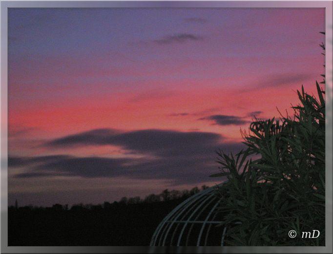 Ciel rose 5 fev 13 TX