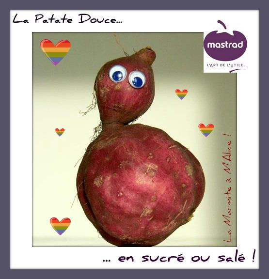 logo patate