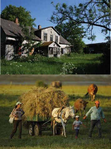 Agriculture-traditionnelle--Rewilding-Europe.jpg