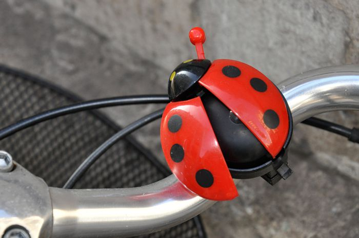 coccinelle-rouge.jpg