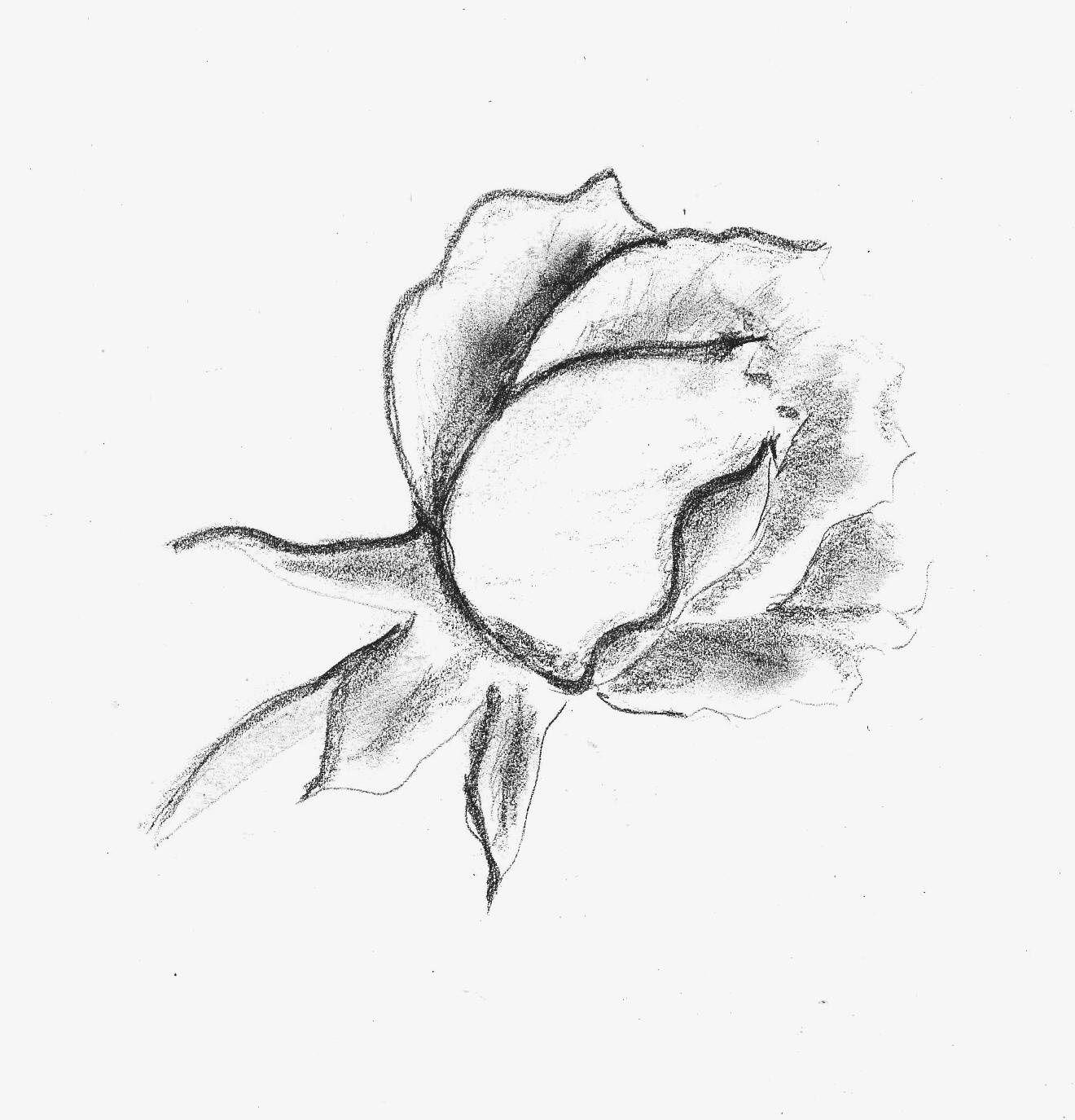 ecriture un trait tatouage