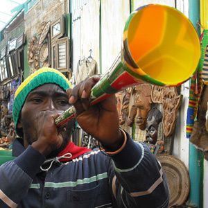 South_African_fan_in_Johannesburg_during_World_Cup_2010-06-.jpg