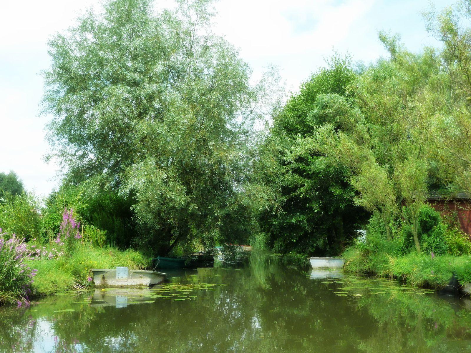 Les Hortillonnages,Amiens