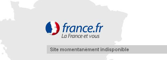 france-fr-site-internet-bug 528431