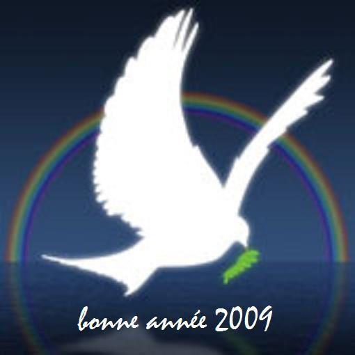 Blog de mariecaillou :LA CUISINE DE MAMIE CAILLOU, 2009 pointe le bout de son nez...