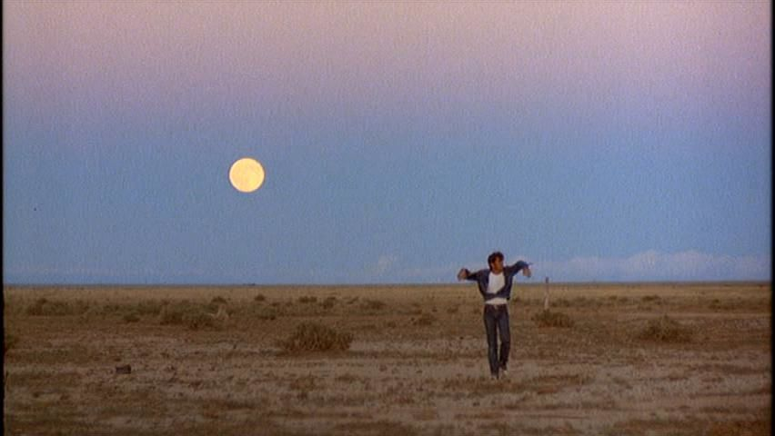 a critique of days of heaven a movie by terrence malick In addition, his critique of my writing style has helped improve the prose a  special  malick's two early films, badlands and days of heaven, indeed  animate.