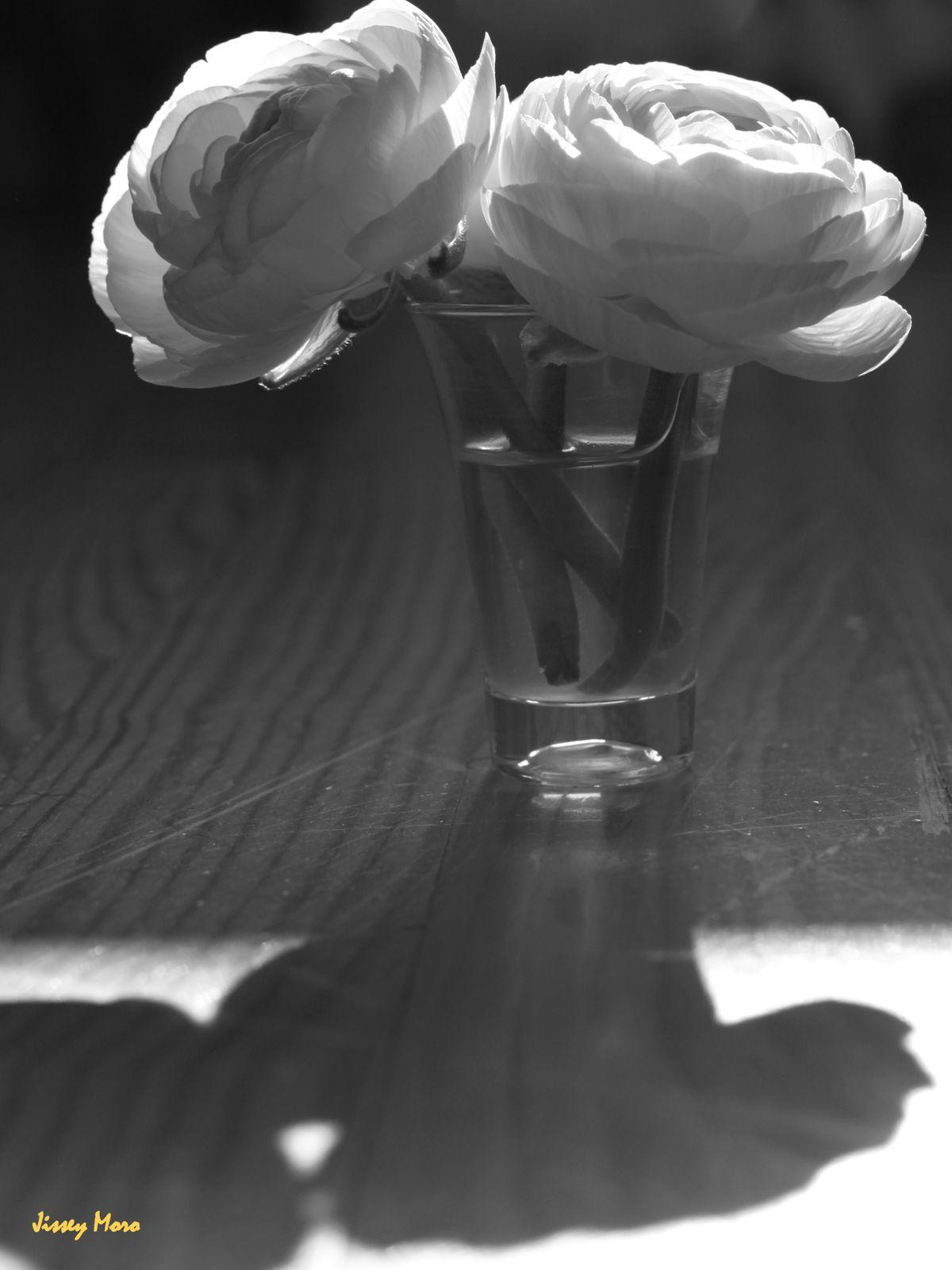 fleurs-en-vrac-4362.JPG