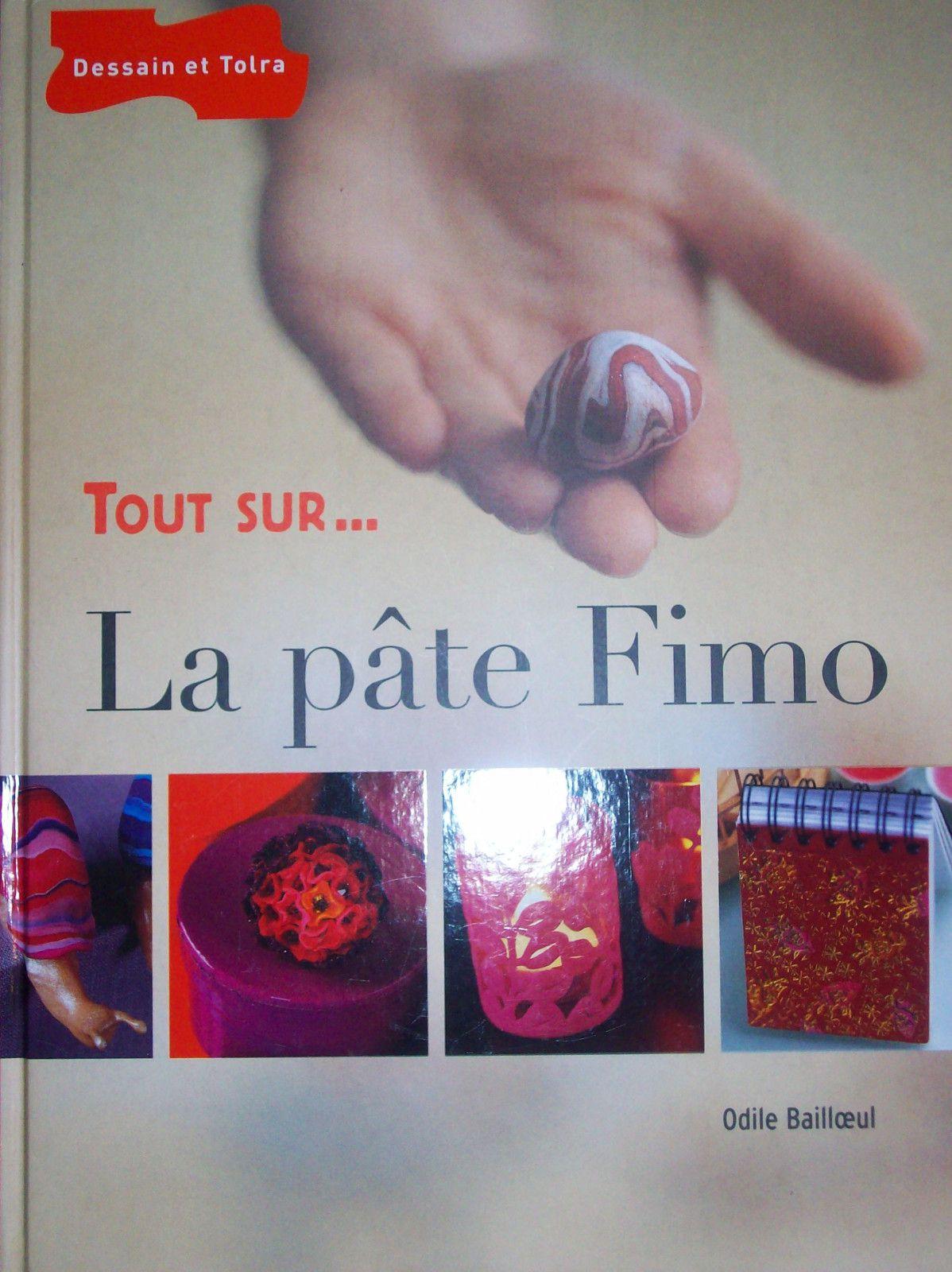 livres sur la pate polymere et les perles le de ophelie