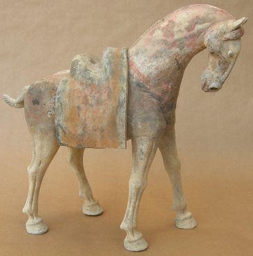 cheval tang 13la10m