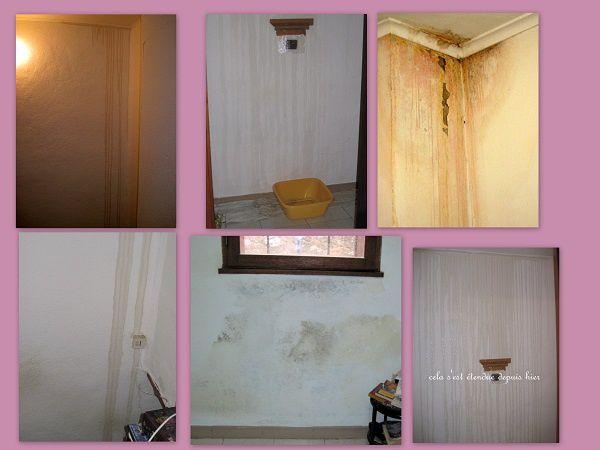 maison1-copie-1.jpg