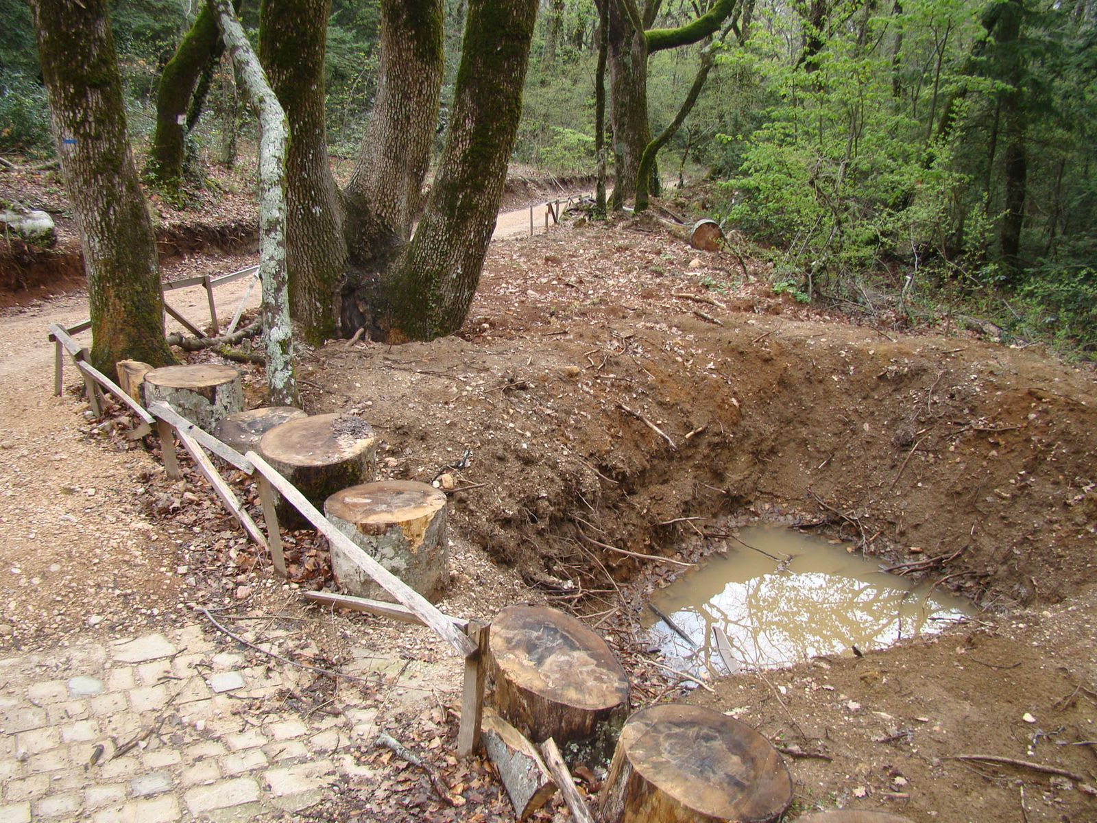 Photos Chemin des Rois état des lieux 2012