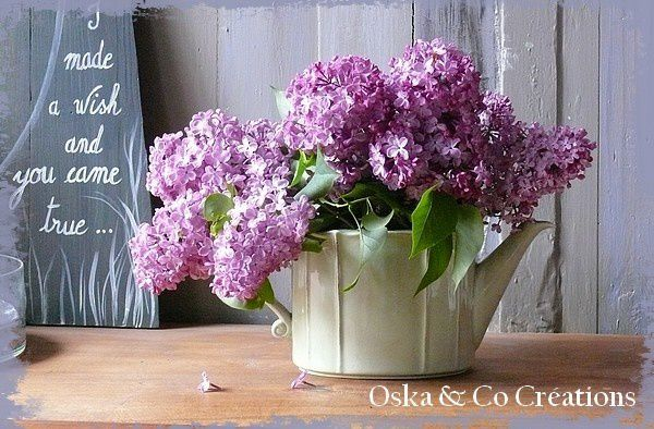 1er-bouquet-de-mes-lilas.jpg