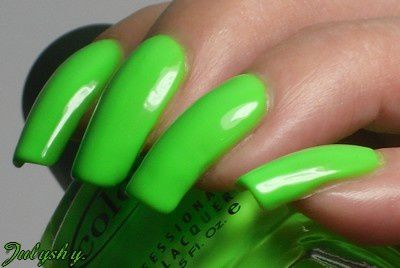 The-Lime-Starts-Here-2.jpg