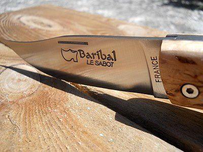 baribal bouleau (4)
