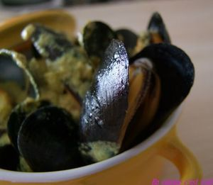 Moules_curry_01