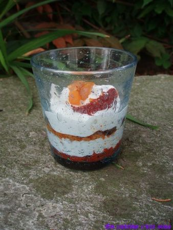 Verrine_tomates_chevre_fruits_secs_01