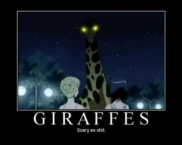 158Giraffes.jpg