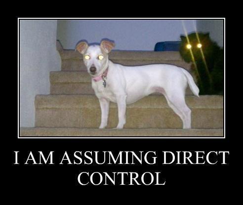 assuming_control.jpg