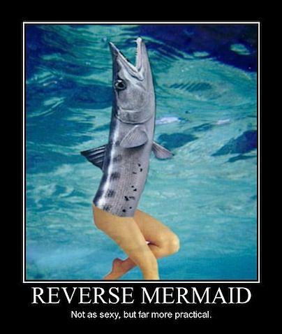 reverse_mermaid.jpg