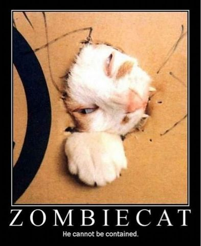 zombie_cat.png