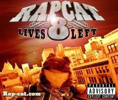 rapcat 3