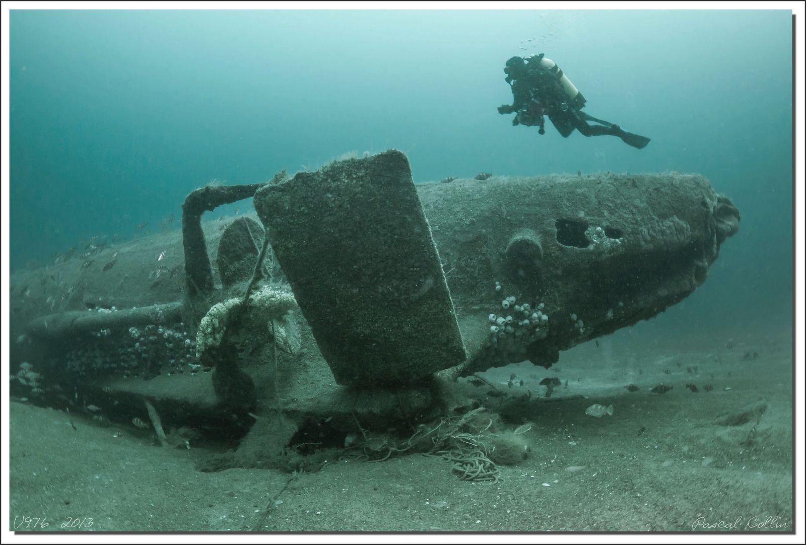 Plongée mémorable sur le U-976 avec une visi incroyable