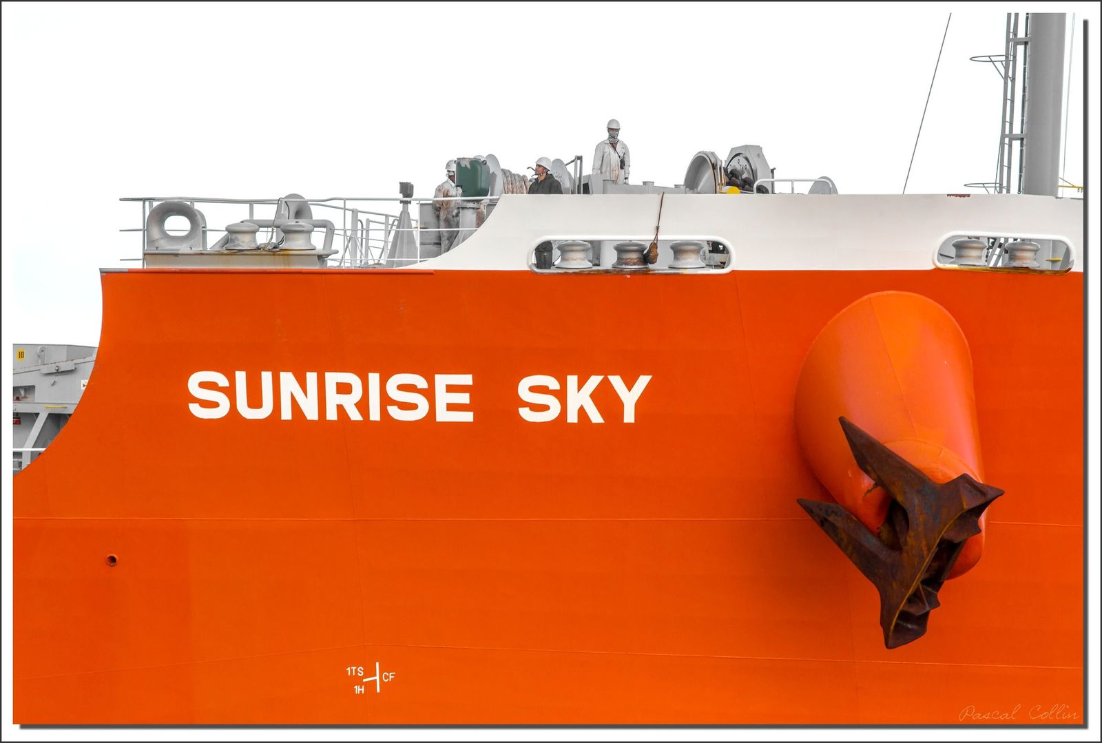 Album - Sunrise-Sky