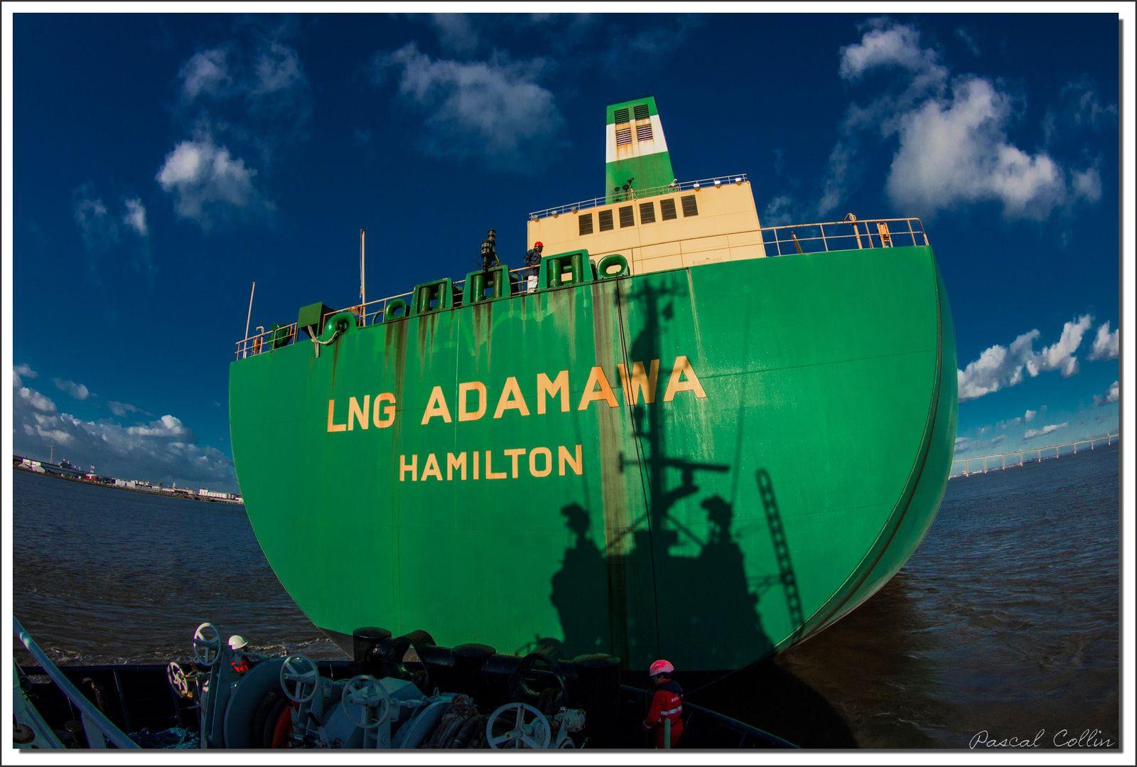 Album - LNG-Adamawa