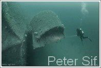 Peter Sif