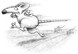 rat_race2.jpg