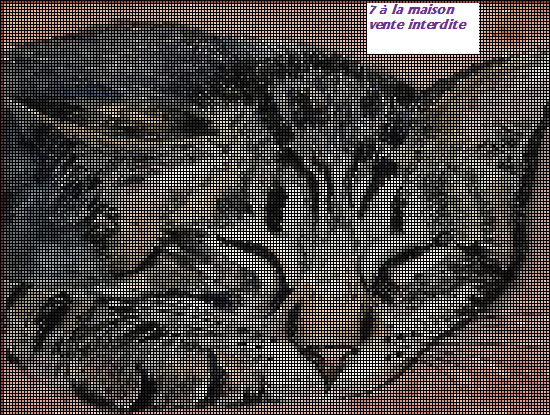 Broderie machine gratuite chat