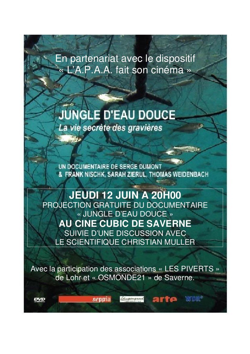 JUNGLE-D-EAU-DOUCE-AFFICHE.jpg