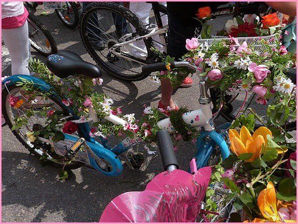 Vélos décorés (1)