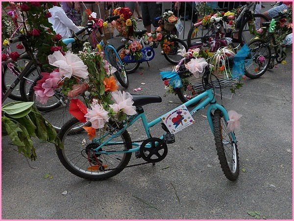 Vélos décorés (7)