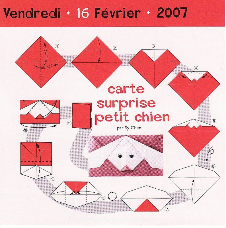 carte-surprise-petit-chien.jpg