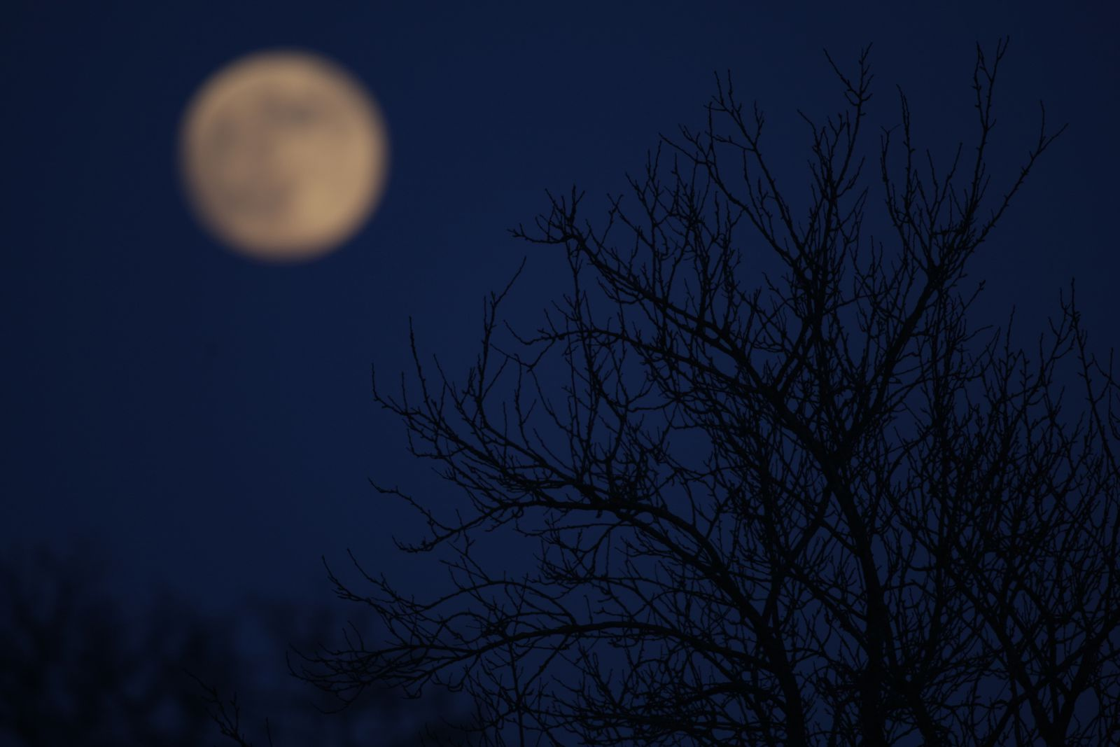 Pleine lune photo de Picardie Benoit Henrion