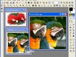 imagesCA2T5IL0.jpg