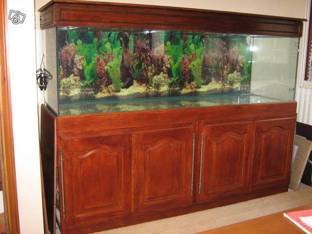 Achat de mon aquarium 700 litres aquarium eau de mer for Achat aquarium eau de mer
