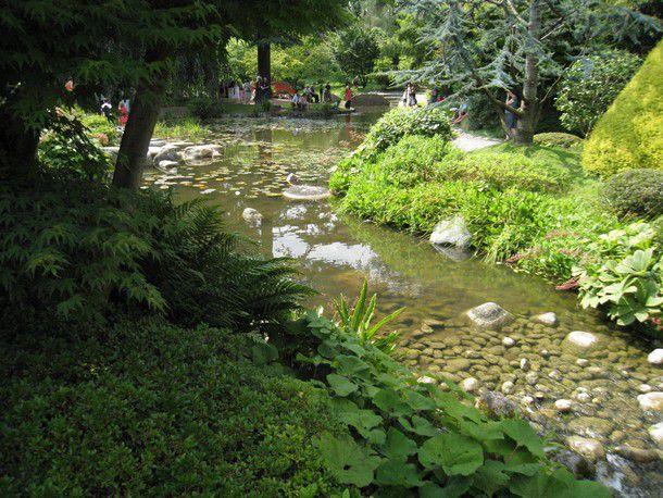 L 39 eau dans le 39 nouveau jardin japonais 39 1 2 du jardin for Paysagiste boulogne billancourt