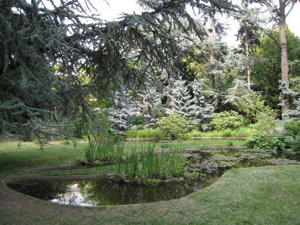Le marais du jardin albert kahn boulogne billancourt - Mobilier jardin grenoble boulogne billancourt ...