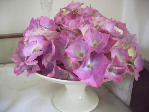 Coupe d-hortensias DOMINIQUE DOLEASOURIS