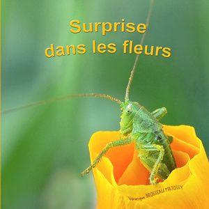 livre-enfant-nature1