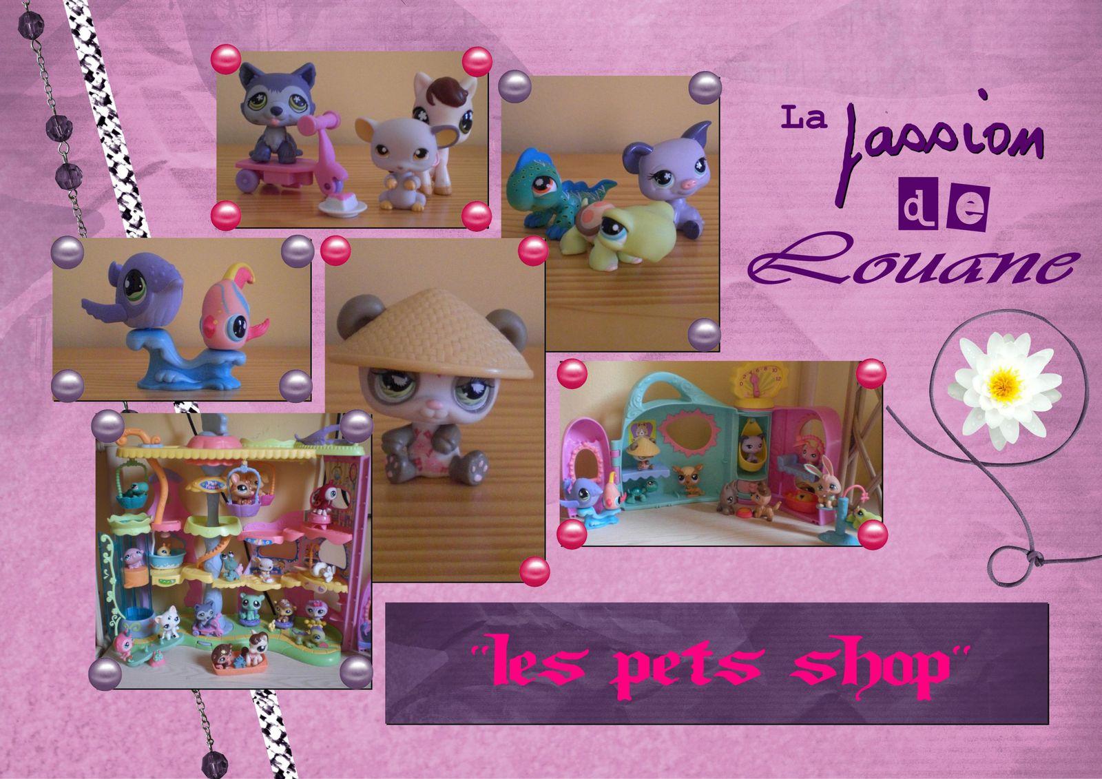 14---La-passion-de-Louane.jpg