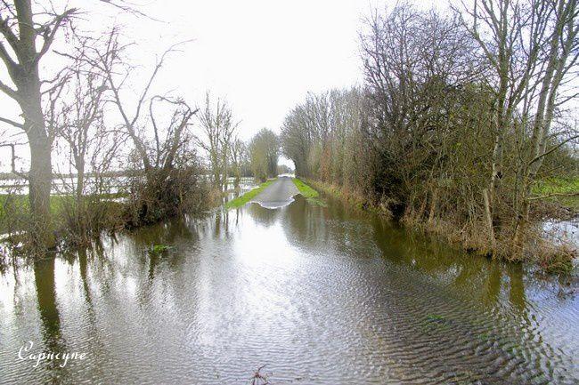 Loire 1406