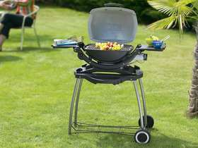 barbecue-gaz-q-120-2-6-kw-jardin-barbecue-barbecue-gaz-webe.jpg